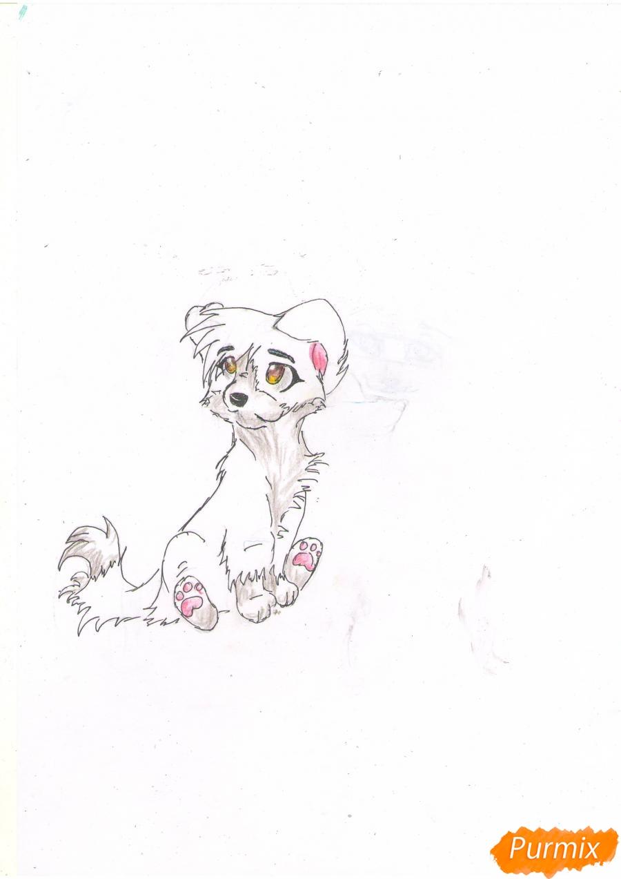 Рисуем щенка в стиле аниме  для начинающих - шаг 6