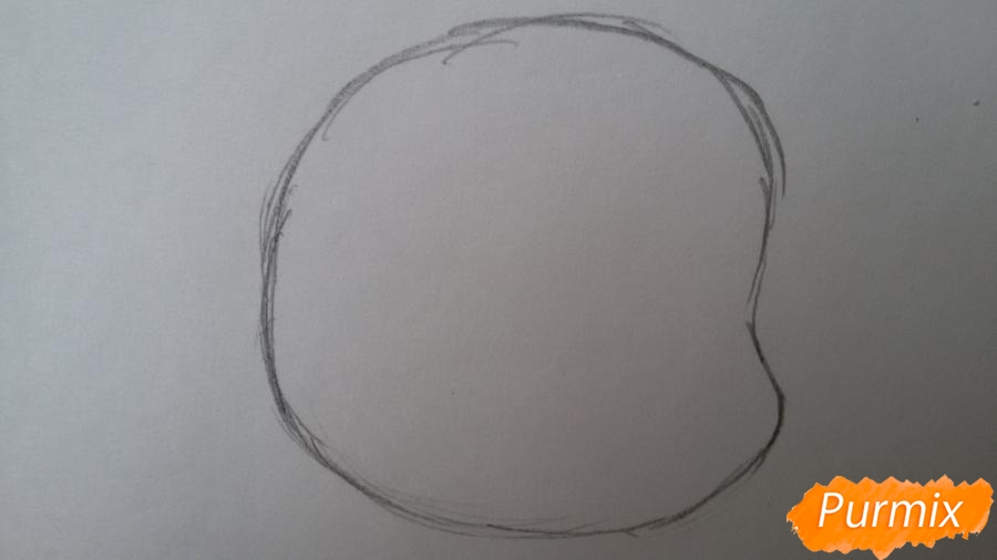 Рисуем удивлённую кошку Луну для начинающих - шаг 1