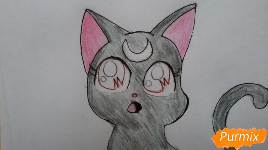 Рисуем удивлённую кошку Луну для начинающих - шаг 7