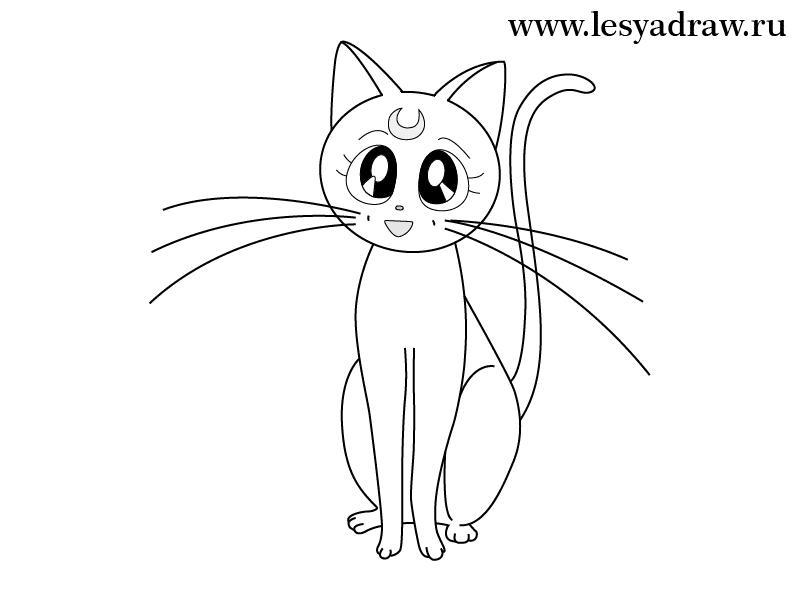 Рисуем кошку Луну из Сейлор Мун - шаг 5