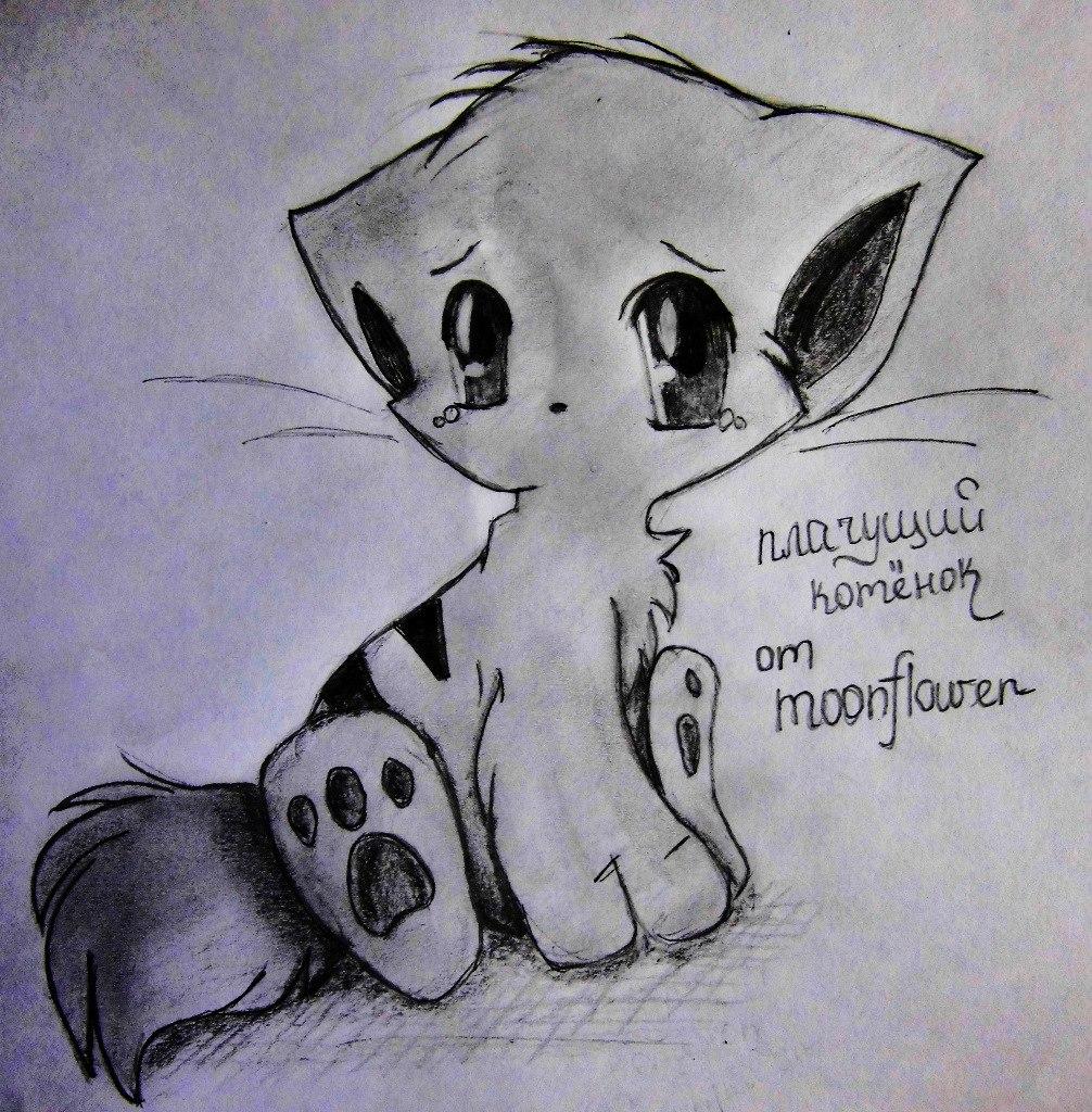 Рисуем плачущего аниме котёнка - шаг 8