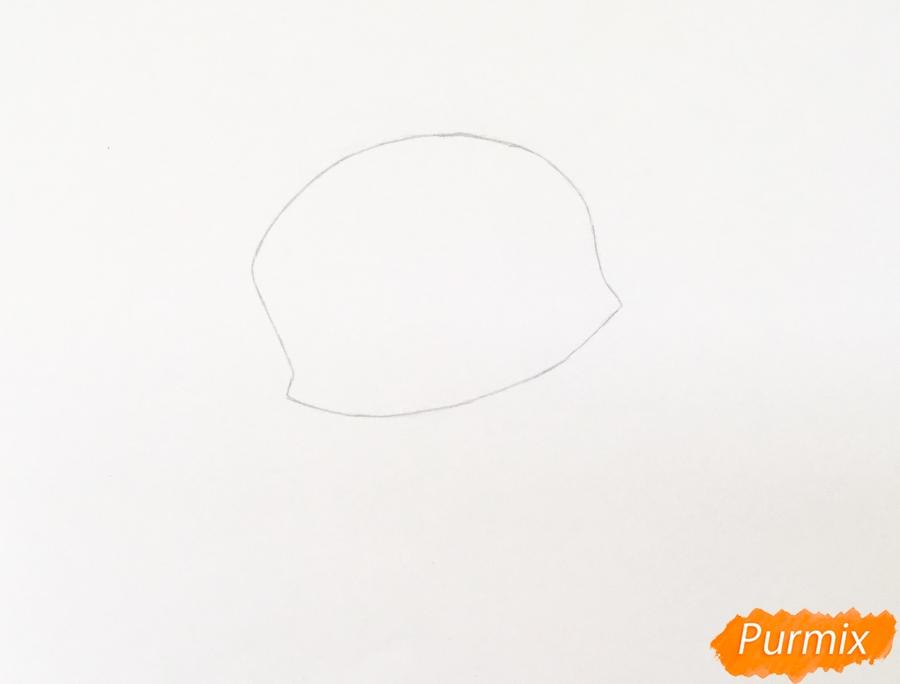 Рисуем сиамского котёнка в стиле аниме - шаг 1
