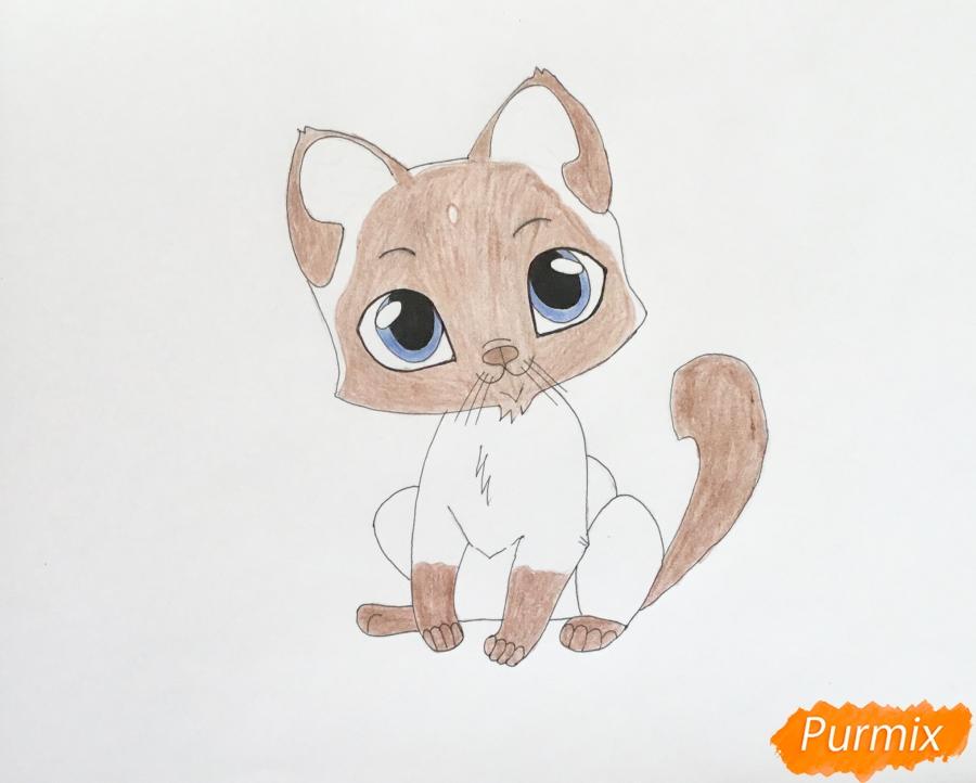Рисуем сиамского котёнка в стиле аниме - шаг 7