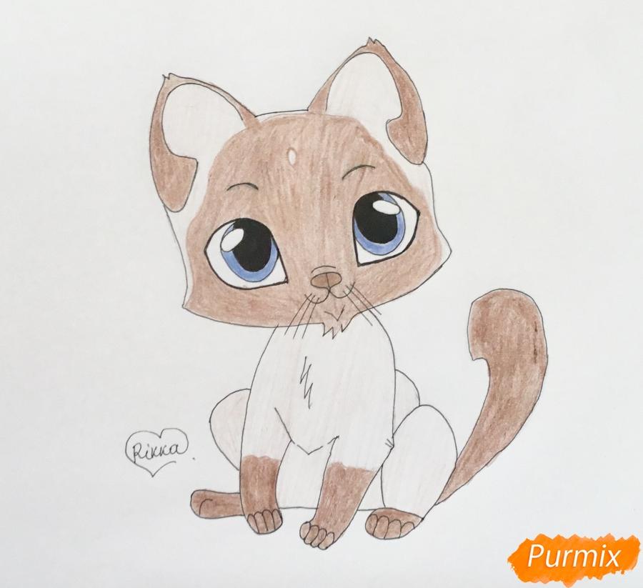 Рисуем сиамского котёнка в стиле аниме - шаг 8