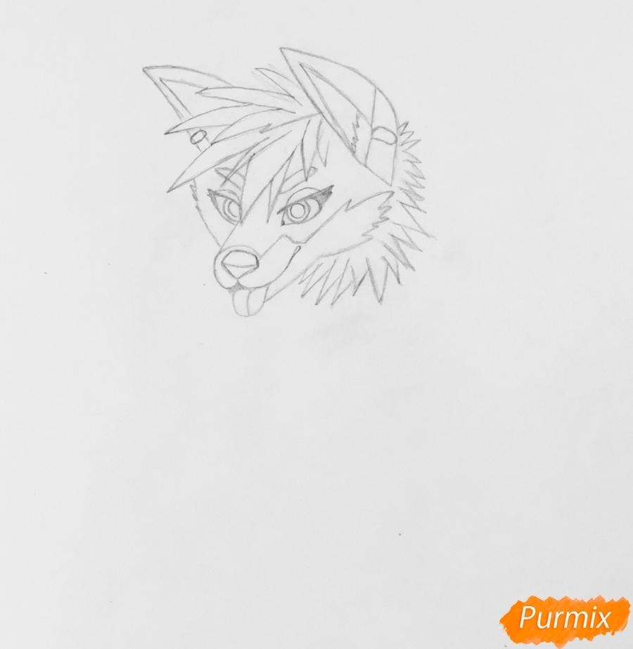 Рисуем трёхцветного аниме лиса с ошейником и с серёжками в ушах - шаг 3