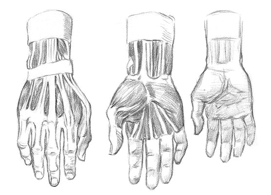 Рисуем руки человека  для начинающих - шаг 1