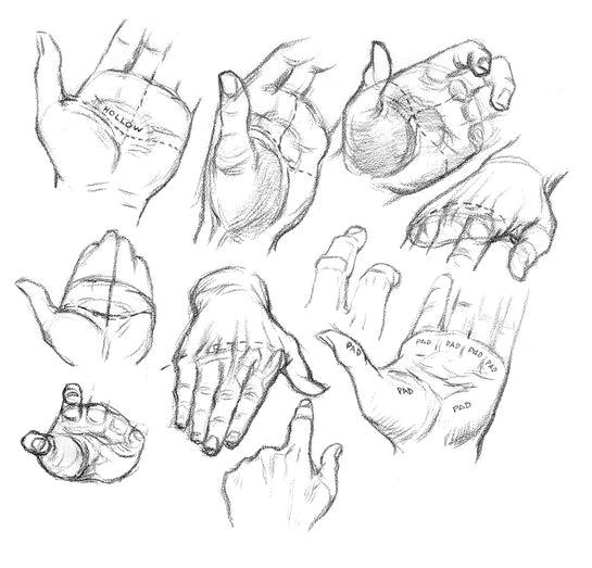 Как рисовать ладони - шаг 1