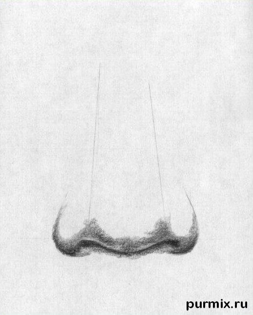 Рисуем человеческий нос простым - шаг 3