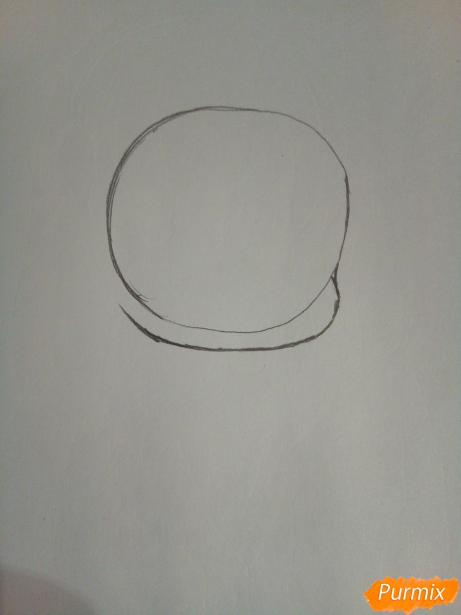 Рисуем чиби девочку лисичку с розами - шаг 1