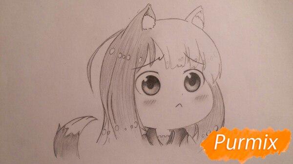Рисуем Холо из аниме Волчица и пряности в стиле чиби - шаг 5