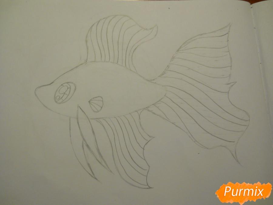 Рисуем и раскрасить рыбку ребёнку - шаг 3