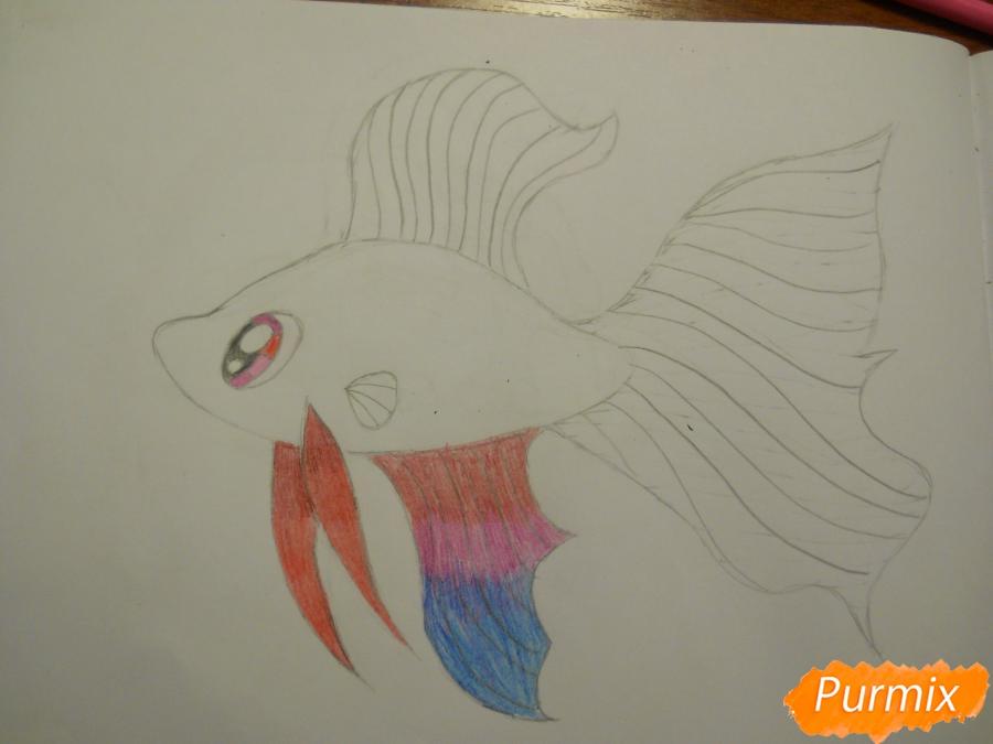 Рисуем и раскрасить рыбку ребёнку - шаг 6