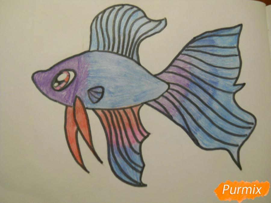 Рисуем и раскрасить рыбку ребёнку - шаг 9