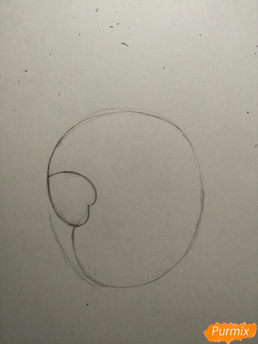 Рисуем попугайчика для ребенка карандашами - шаг 2