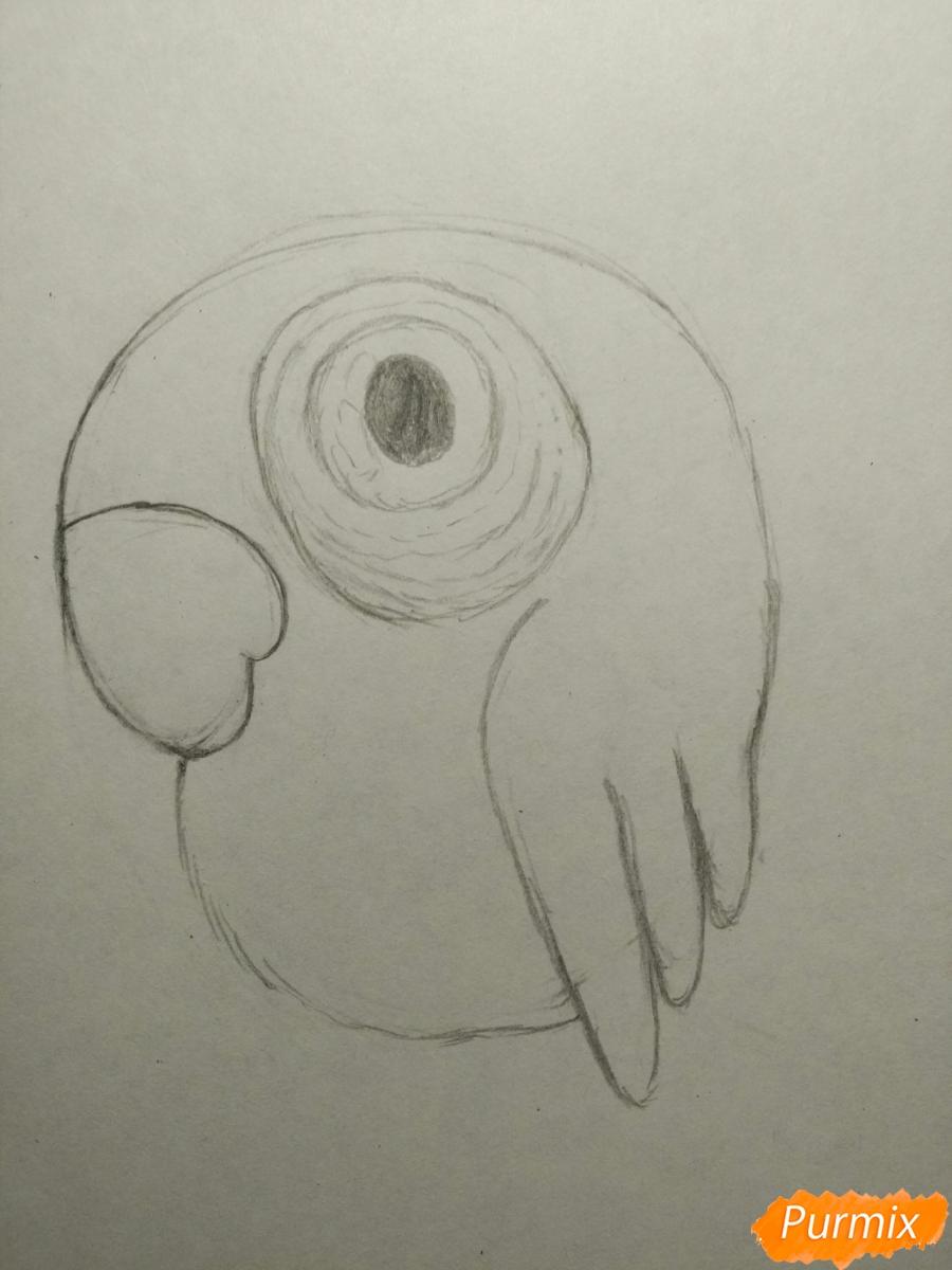 Рисуем попугайчика для ребенка карандашами - шаг 5