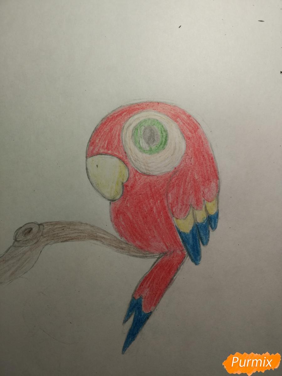 Рисуем попугайчика для ребенка карандашами - шаг 8
