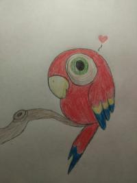 попугая ребенку карандашами