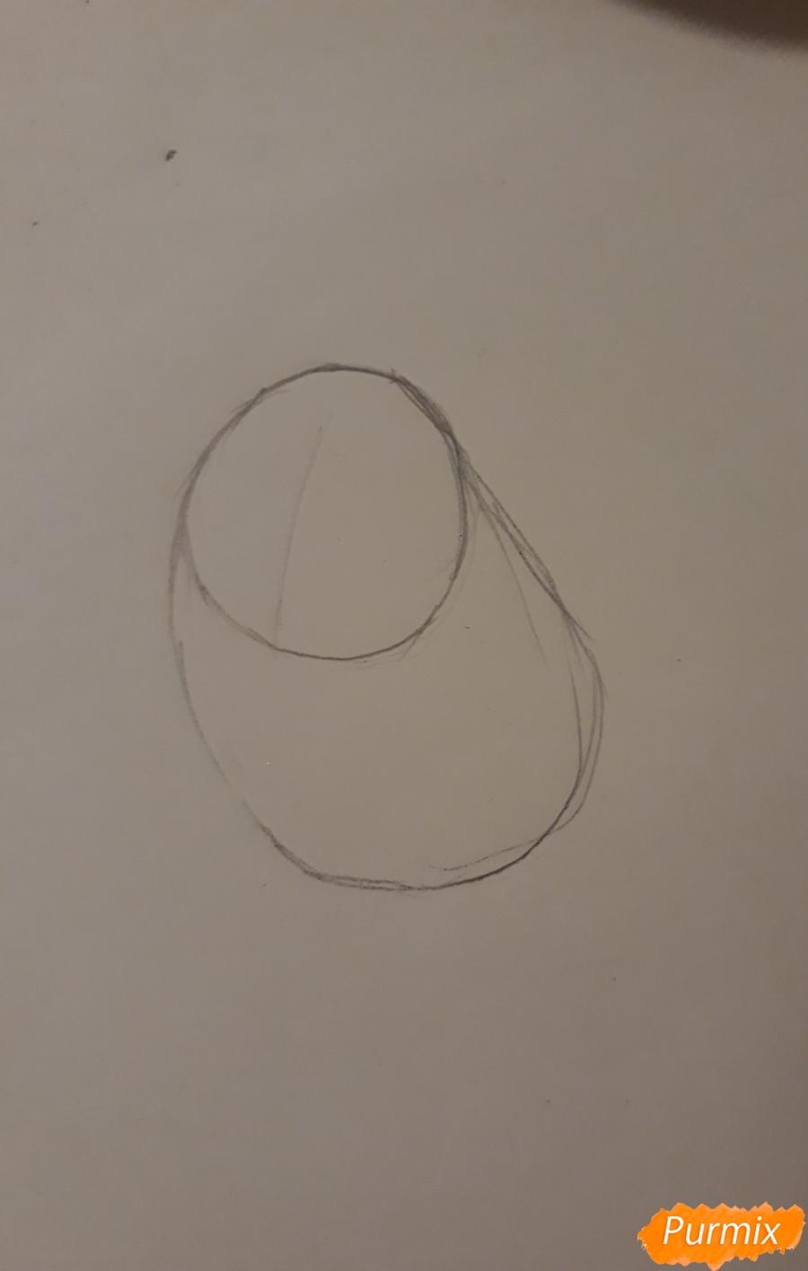 Рисуем трех милых попугайчиков карандашами - шаг 2
