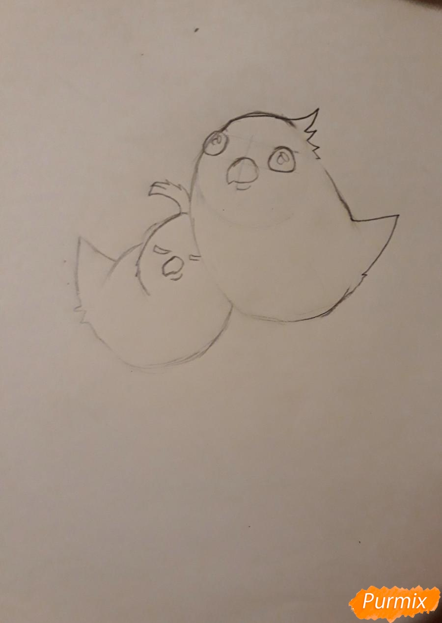 Рисуем трех милых попугайчиков карандашами - шаг 5