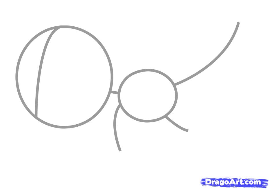 Рисуем утконоса   для детей - шаг 1