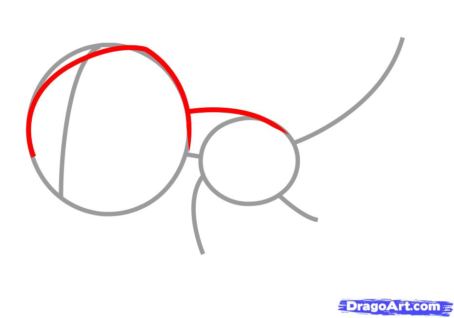 Рисуем утконоса   для детей - шаг 2