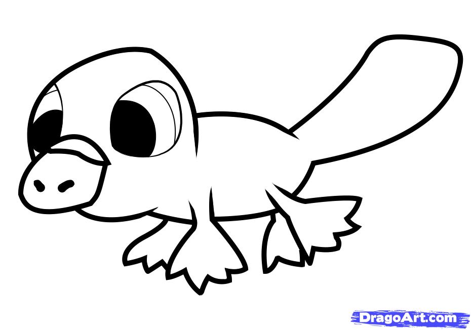 Рисуем утконоса   для детей - шаг 6