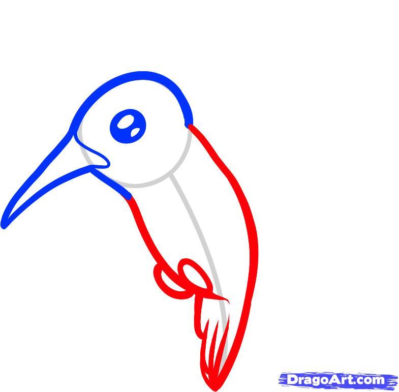 Рисуем птичку Колибри ребенку