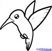 птичку Колибри ребенку карандашом
