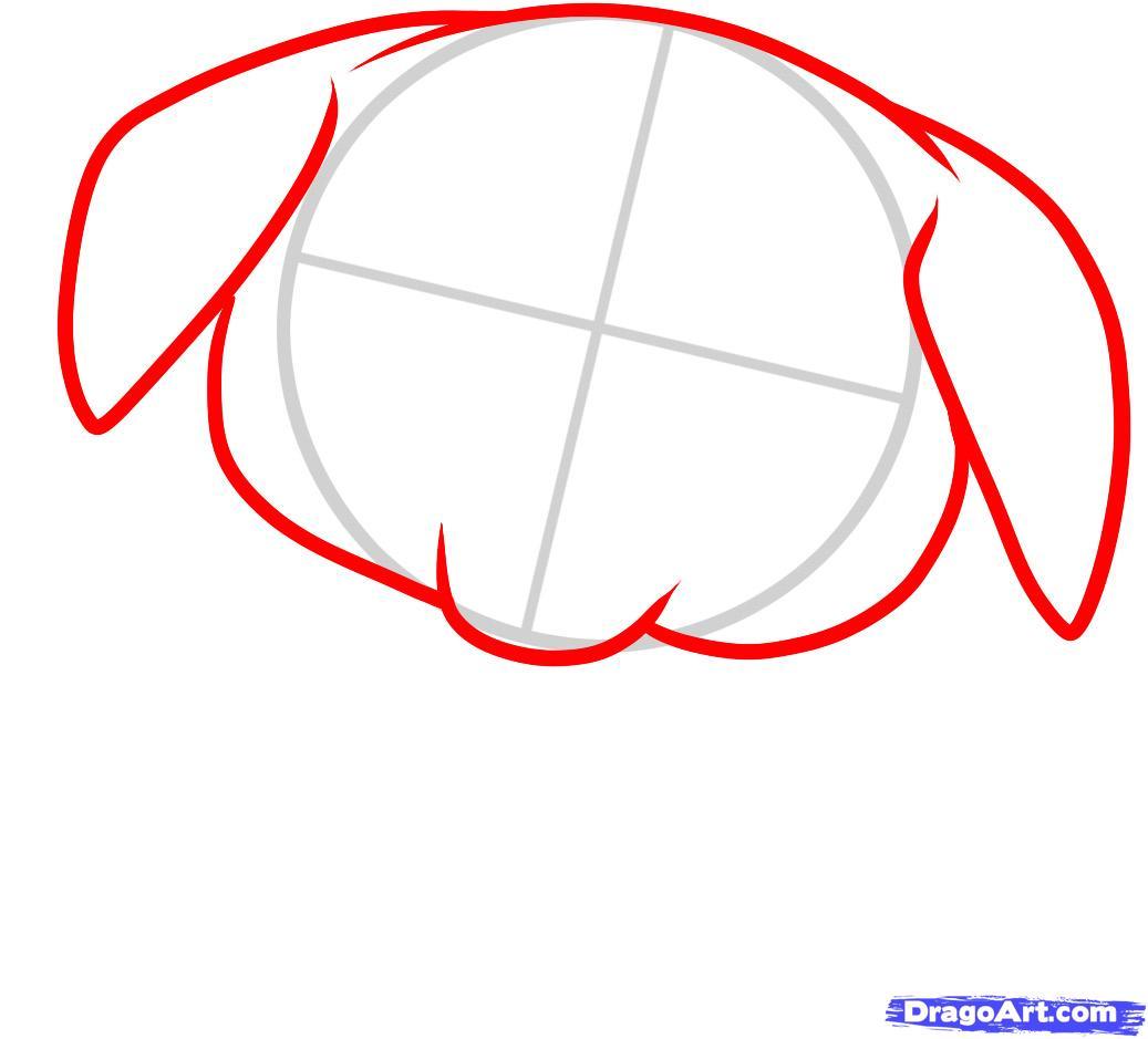 Рисуем щенка ротвейлера ребенку - шаг 2