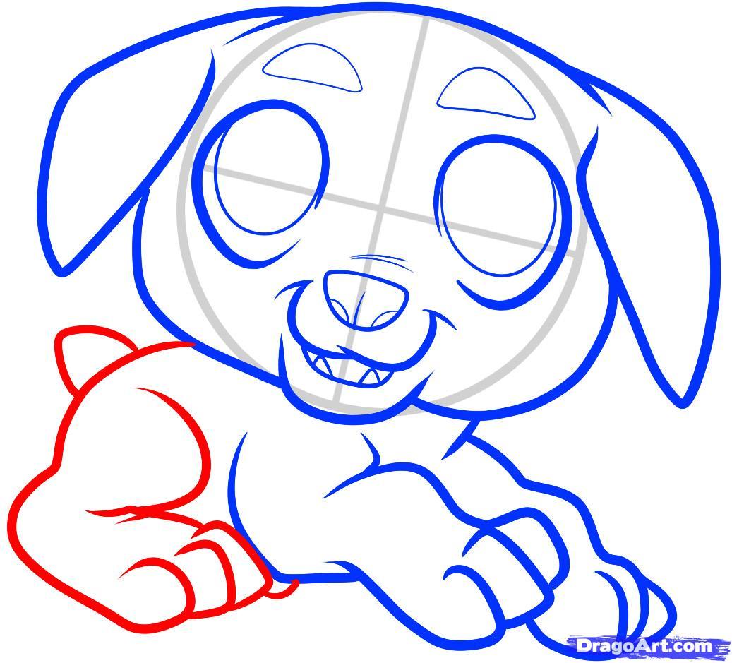 Рисуем щенка ротвейлера ребенку - шаг 7