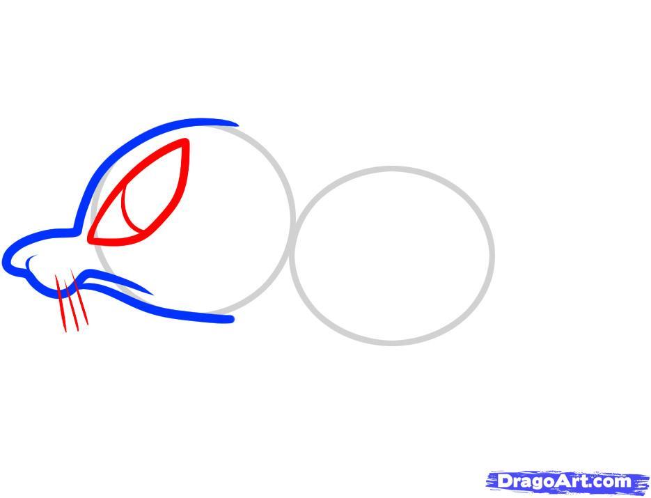 Рисуем симпатичную крысу ребенку - шаг 3