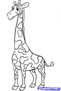 Фото жирафа ребенку карандашом