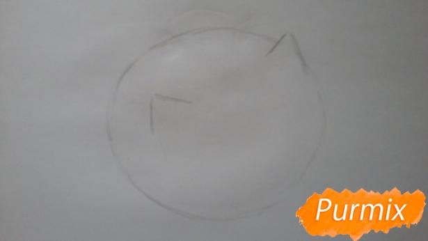 risuem-puhlenkogo-kotika-rebenku-pojetapno-2 Как нарисовать котенка с милыми глазками поэтапно карандашом для детей и начинающих? Как нарисовать котенка аниме, вислоухого, сиамского, спящего?