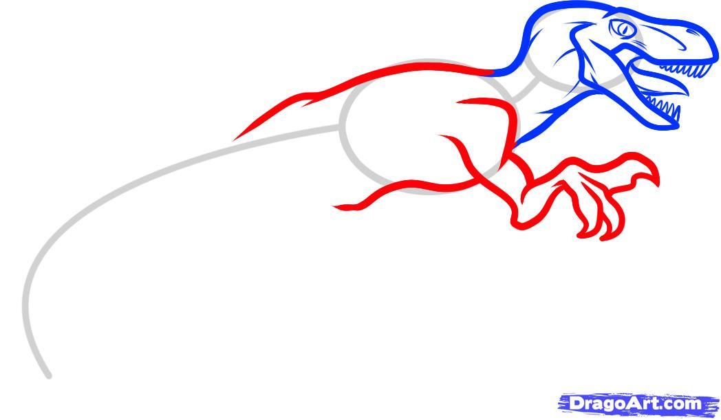 Рисуем динозавра Велоцираптора - шаг 4