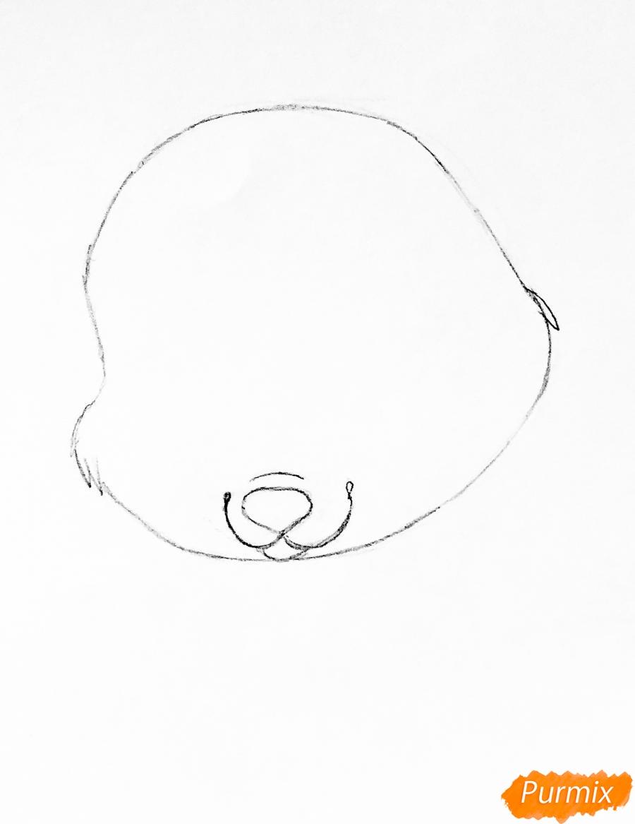 Рисуем кролика Ягодку питомца Белоснежки из мультфильма Palace Pets - шаг 2