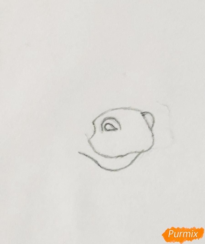 Рисуем лошадку Капельку питомца Ариэль из мультфильма Palace Pets - шаг 1