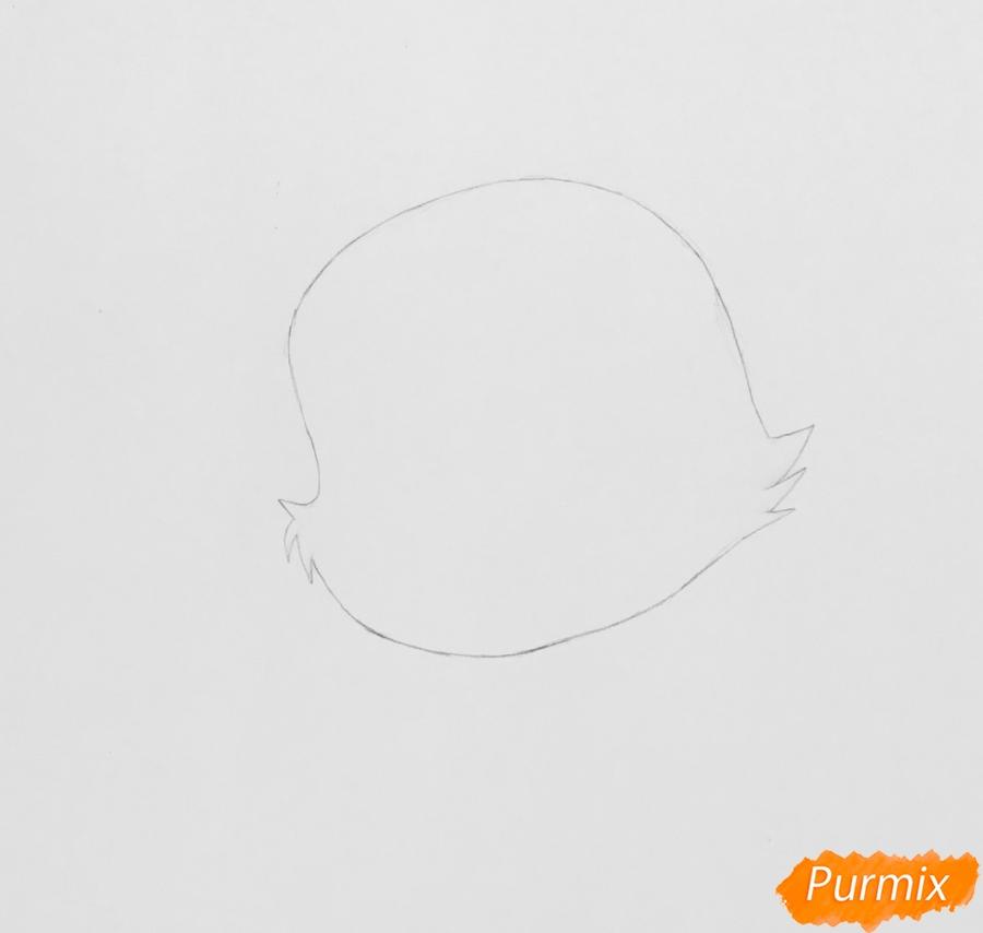 Рисуем питомца Ариэль собачку Дружок из мультфильма Palace Pets - шаг 1