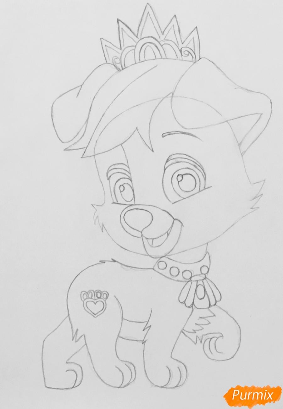 Рисуем питомца Ариэль собачку Дружок из мультфильма Palace Pets - шаг 4