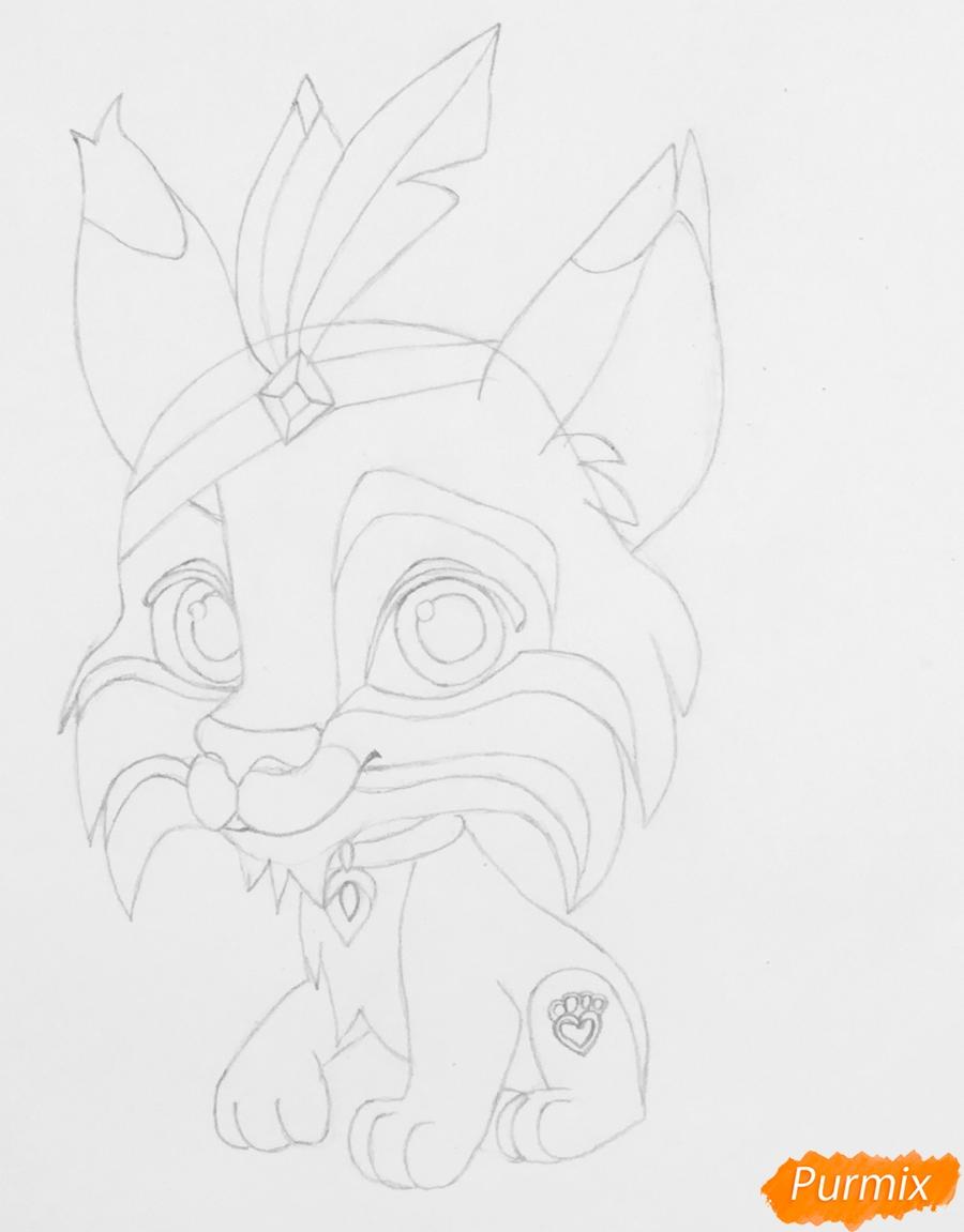 Рисуем питомца Покахонтас рысь Пёрышко из мультфильма Palace Pets - шаг 4