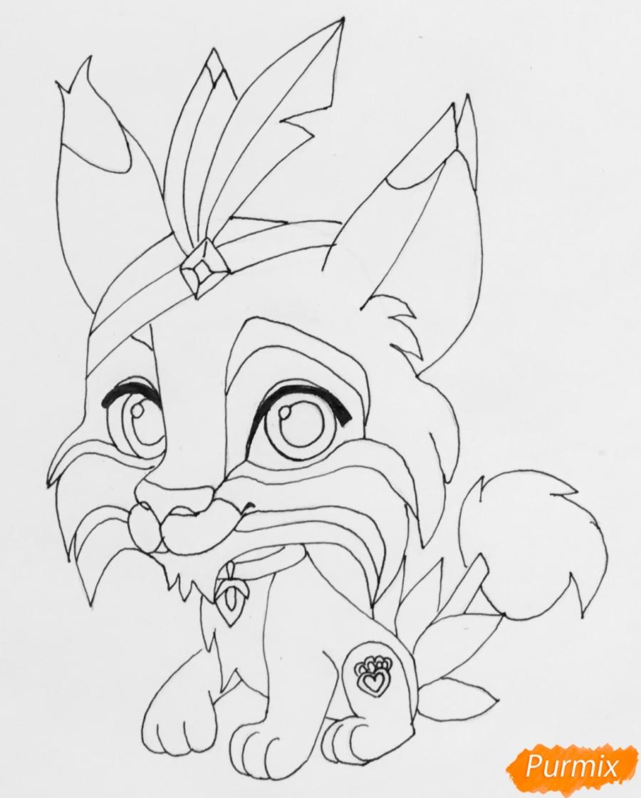 Рисуем питомца Покахонтас рысь Пёрышко из мультфильма Palace Pets - шаг 6