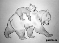 Фото Кеная и Коду из Братец медвежонок простым карандашом