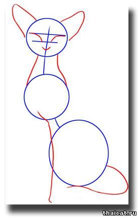 Рисуем сиамскую кошку - шаг 2