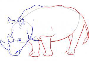Рисуем носорога - шаг 9