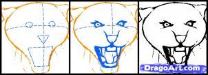 Учимся рисовать голову тигра с открытым ртом - шаг 2
