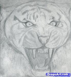 Учимся рисовать голову тигра с открытым ртом - шаг 7