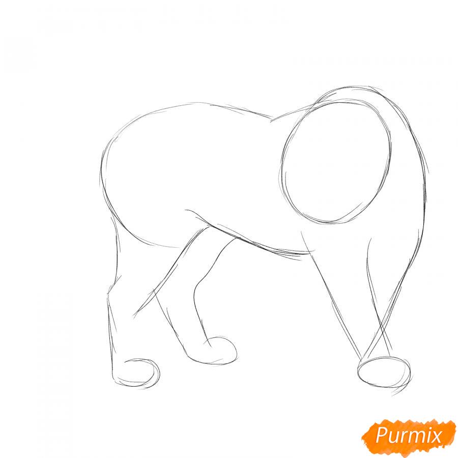 Рисуем амурского тигра в полный рост - шаг 2