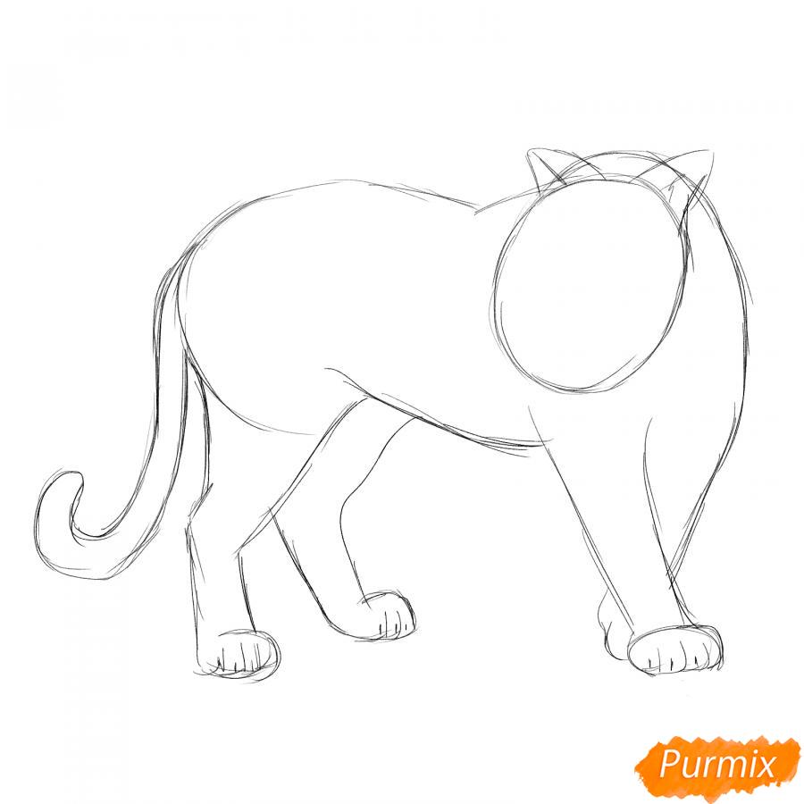Рисуем амурского тигра в полный рост - шаг 3