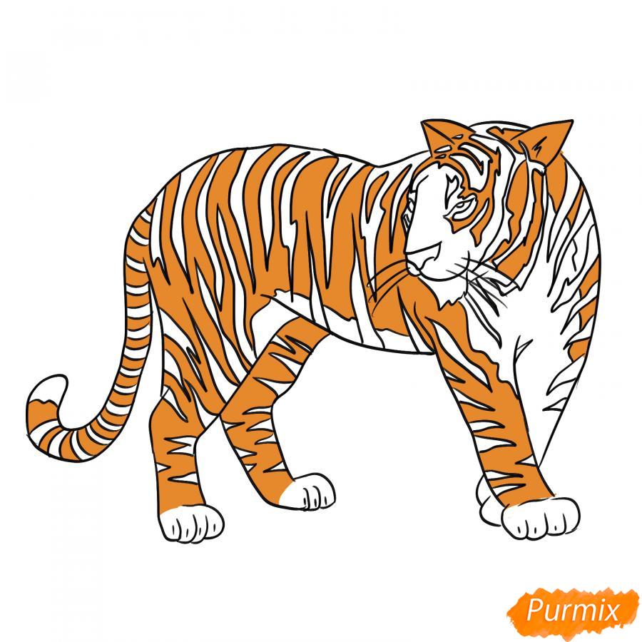 Рисуем амурского тигра в полный рост - шаг 7