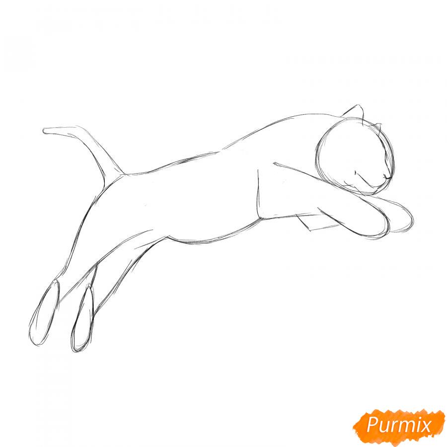 Рисуем белого тигра в прыжке - шаг 3