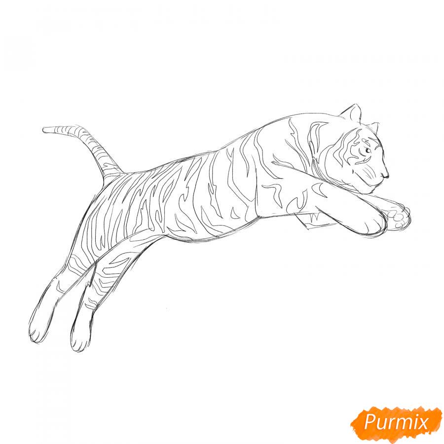 Рисуем белого тигра в прыжке - шаг 4